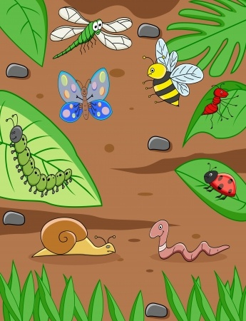 LEAF Garden Science: Worms and other garden creatures