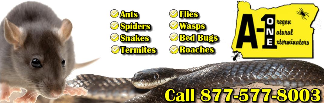 A-One Exterminators