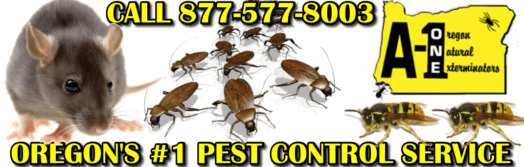 A1 Pest Control Services Grants Pass
