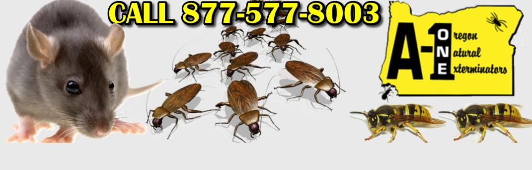 A1 Pest Control Services Grants Pass