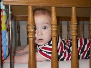 baby bed bugs say no pest exterminator medford
